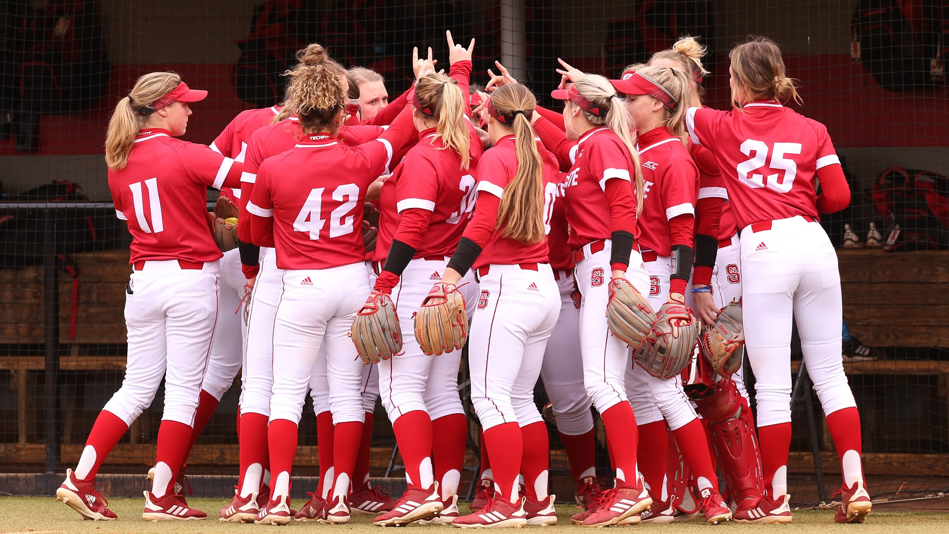 Nc State Softball Set For Home Series Against Syracuse Nc State